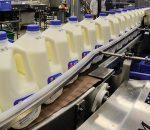Complete Fluid Milk High Volume Jug Plant